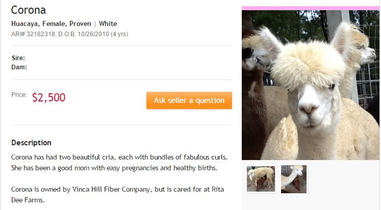 Corona: For Sale